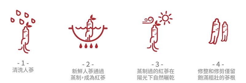 1.清洗人蔘 2.新鮮人蔘通過蒸制,成為紅蔘 3.蒸制過的紅蔘在陽光下自然曬乾 4.修整和修剪僅留飽滿粗壯的蔘根